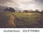 nature background with vintage... | Shutterstock . vector #1015749883