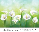 vector illustration of spring... | Shutterstock .eps vector #1015872757