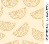 seamless pattern. sliced citrus ... | Shutterstock .eps vector #1016035993