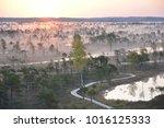 sunrise in swamp kemeri latvia    Shutterstock . vector #1016125333
