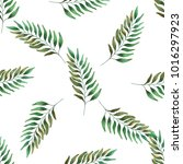 watercolor green branches | Shutterstock . vector #1016297923