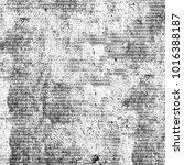 grunge black white. texture of... | Shutterstock . vector #1016388187