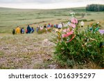 wish tree  ribbons on the tree  ...   Shutterstock . vector #1016395297