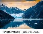 Sawyer Glacier At Tracy Arm...