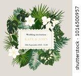 wedding invitation  background... | Shutterstock .eps vector #1016500957