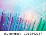 colorful rows of laboratory... | Shutterstock . vector #1016542357