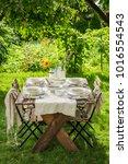 homemade and healthy chicken... | Shutterstock . vector #1016554543