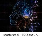 digital mind series. background ... | Shutterstock . vector #1016555077