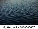 water riples texture... | Shutterstock . vector #1016565487