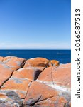 Small photo of Red rocks on a Tasmanian beach