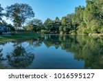 lake view with water reflection | Shutterstock . vector #1016595127