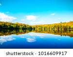 beautiful lake and blue sky... | Shutterstock . vector #1016609917
