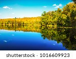 green forest and blue sky... | Shutterstock . vector #1016609923