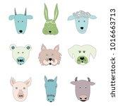 set of hand drawn pet. vector... | Shutterstock .eps vector #1016663713