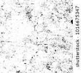 chaotic grunge ink particles.... | Shutterstock . vector #1016675347