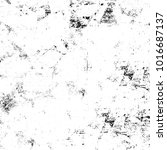 chaotic grunge ink particles....   Shutterstock . vector #1016687137