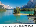 beautiful canadian rockies ... | Shutterstock . vector #1016725867