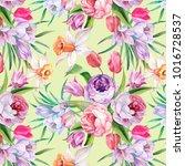 cute pattern of watercolor...   Shutterstock . vector #1016728537