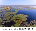 danube delta aerial view  delta ... | Shutterstock . vector #1016765917