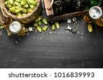 beer background. fresh beer and ... | Shutterstock . vector #1016839993