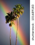 this is a rainbow crossing near ...   Shutterstock . vector #101689183