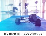 pair of metal dumbbells with... | Shutterstock . vector #1016909773