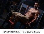 sexy strong bodybuilder... | Shutterstock . vector #1016975137