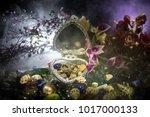 beautiful opened old vintage... | Shutterstock . vector #1017000133