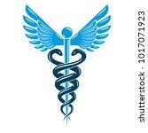 caduceus symbol made using bird ... | Shutterstock .eps vector #1017071923