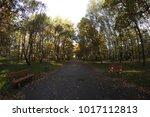 autumn forest in poland | Shutterstock . vector #1017112813