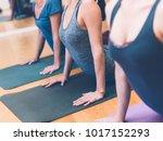 women practicing yoga and... | Shutterstock . vector #1017152293