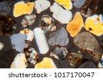 thin section of desert sand...   Shutterstock . vector #1017170047