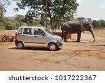ponda. india. 16 february 2008  ... | Shutterstock . vector #1017222367