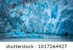 magnificent sawyer glacier at... | Shutterstock . vector #1017264427