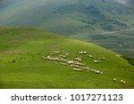 persembe plateau     thursday... | Shutterstock . vector #1017271123