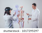 doctor uses augmented reality... | Shutterstock . vector #1017295297
