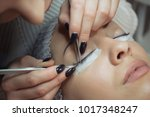 eyelash extension procedure.... | Shutterstock . vector #1017348247