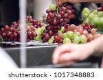view of the green and red... | Shutterstock . vector #1017348883
