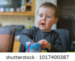 editorial use only  adorable...   Shutterstock . vector #1017400387
