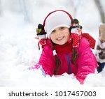 closeup winter portrait of cute ... | Shutterstock . vector #1017457003