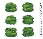 natural bush vector | Shutterstock .eps vector #1017515647