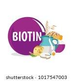 biotin  vitamin h  vitamin b7 . ... | Shutterstock .eps vector #1017547003