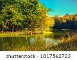 forest riverside scene vintage... | Shutterstock . vector #1017562723