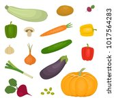 set of vegetables  isolated on... | Shutterstock .eps vector #1017564283