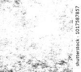 grainy overlay texture.... | Shutterstock .eps vector #1017587857