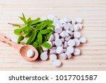 medicine herb. herbal pills... | Shutterstock . vector #1017701587