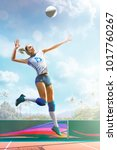professional female volleyball... | Shutterstock . vector #1017760267