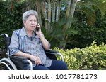 elder woman in wheelchair talk... | Shutterstock . vector #1017781273