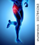 3d illustration  hip painful... | Shutterstock . vector #1017841363