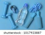jump rope  water bottle ... | Shutterstock . vector #1017923887